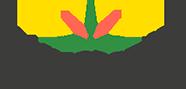 LR Flavoursense Logo